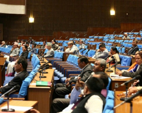 Parliamentarians draw attention of govt on contemporary issues in Parliament