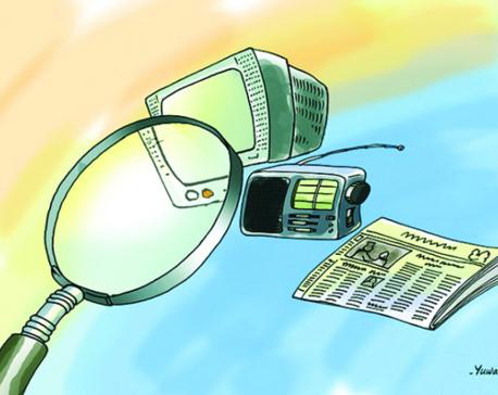 Media for development