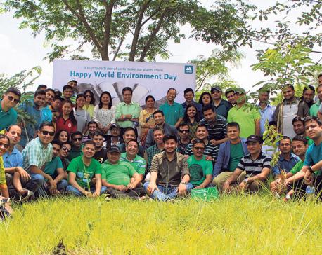 NMB Bank celebrates World Environment Day