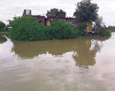 Despite spending millions on fixing its drainage system, Nepalgunj inundated by sewage