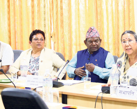 NCP MPs divided along UML-Maoist fault line on disputed bills, issues