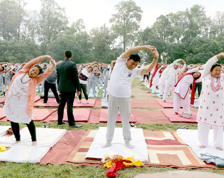 Yog for healthy body, peaceful mind: Vice President Pun