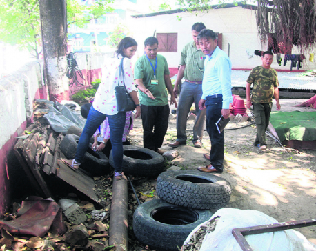 Dengue-hit Dharan destroying mosquito breeding grounds
