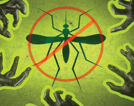 Keeping dengue at bay