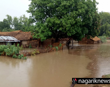 Indian 'dam road' inundated Nepali villages (with photos)