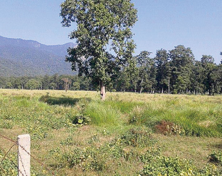 Kailali industrial estate project in limbo