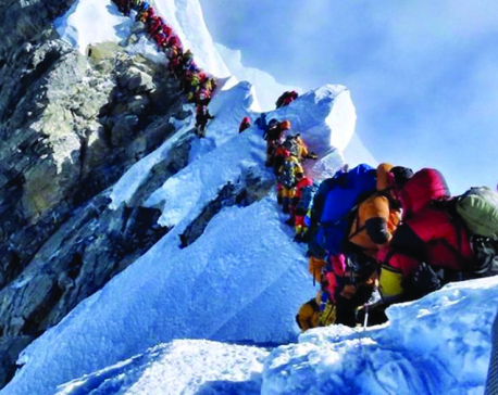 Five-member govt panel probing climber deaths