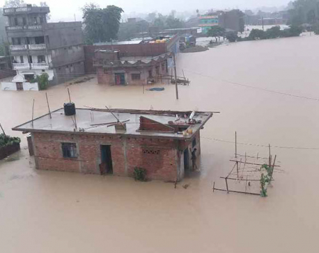 In pictures: Scores of villages in Rautahat inundated