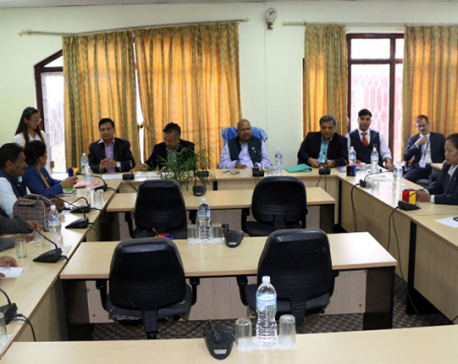 Parliamentary Hearing Committee begins hearing of proposed ambassadors
