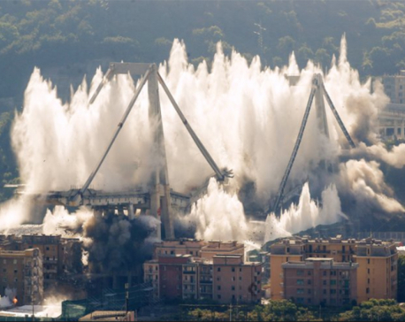 Remaining parts of collapsed Italian bridge are demolished