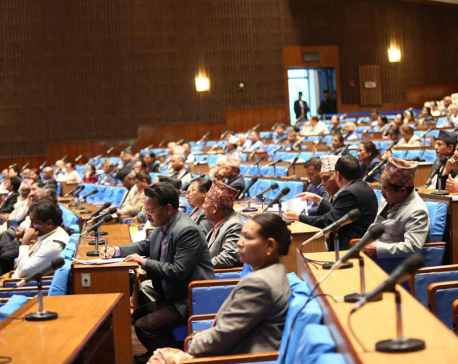 Lawmakers draw govt's attention on contemporary issues