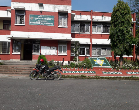 Purwanchal Campus postpones classes due to dengue epidemic