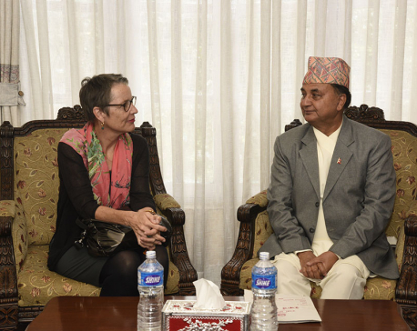 Swiss envoy meets Defence Minister Pokhrel