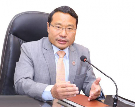 Govt working to provide electricity to country's every household within two years, says Energy Minister Pun