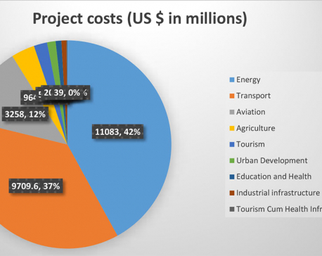 Energy tops government's FDI priority for investment summit