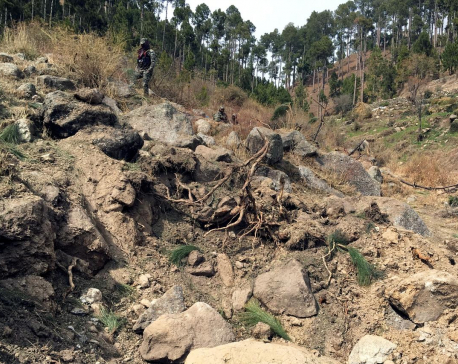 Pakistan to lodge U.N. complaint against India for 'eco-terrorism' forest bombing