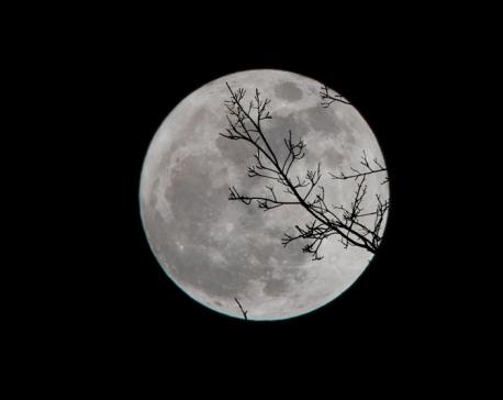Eternity of Moonlight: Worship to the serene moon