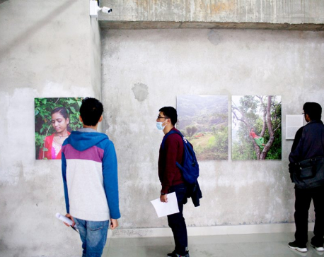 'Our songs from the forest' on display