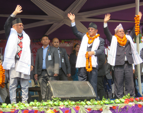 Will leave no stone unturned for dev of Madhes: Heavyweights