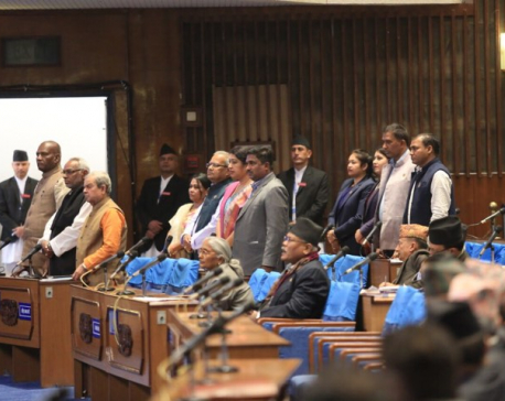 RJPNobstructs parliamentary session