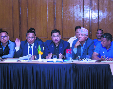 ANFA appoints Nembang as senior VP, amid boycott from members