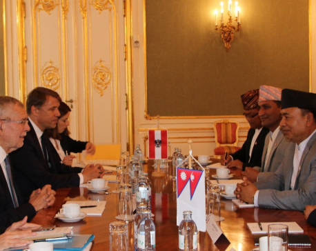 Vice President Pun meets Austrian President