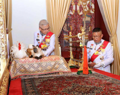 Fake mews? Confusion over cat at Thai king's coronation ceremony
