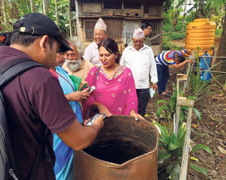Dengue outbreak in Dharan
