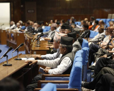 Lawmakers urge govt to maintain peace and security