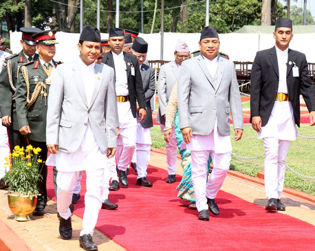 Vice President Pun leaves for Vienna to attend R20 Austrian World Summit