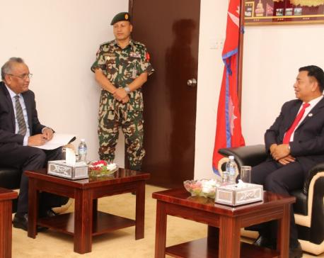 Pakistani ambassador to Nepal calls on Vice President Pun