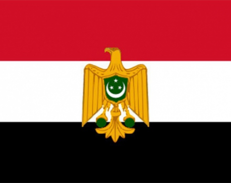 Vice President attends Egypt's National Day reception