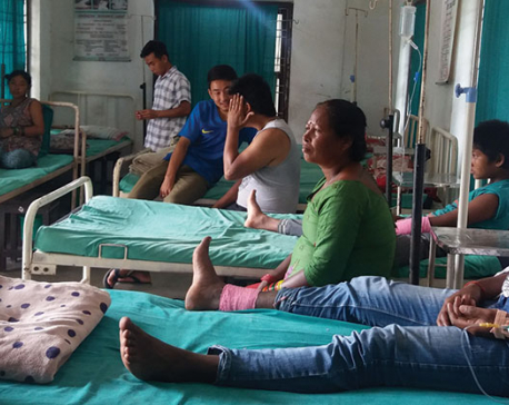 Snakebite patients in eastern Nepal dying due to lack of timely treatment