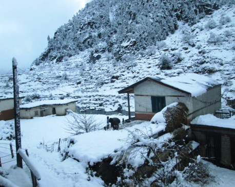 Karnali witnesses heavy snowfall (with photos)