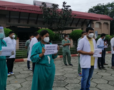 Medics stage demonstration demanding security at BPKIHS