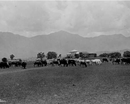 Nostalgia: Chhauni Silkhan in this undated photograph.
