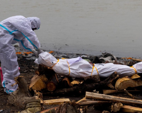Bodies of COVID-19 victims among those dumped in India's Ganges -gov't document