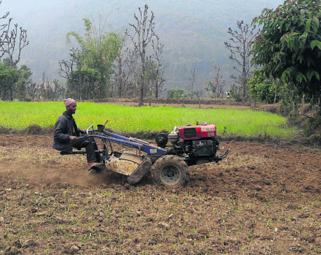 Farmers in Kaski prefer using hand tractors