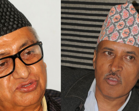 House panel approves Upadhyay, Paudel as envoys to India, China