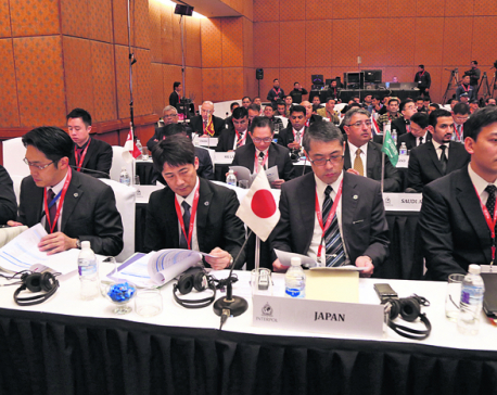 Interpol's Asia conference kicks off, focus on strengthening policing capacity