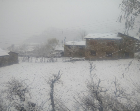 Snowfall cripples people's daily life in Humla, Jajarkot