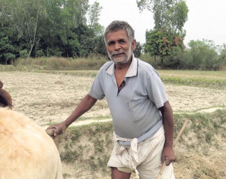 Social activist Baldev Ram dies at 74