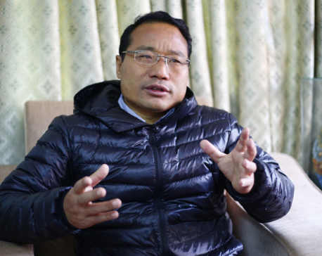 Chairman Dahal and Janardan Sharma should be given credit for ending load-shedding: Pun