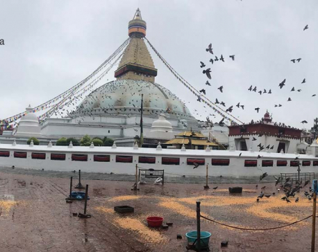 Bauddhanath wears a deserted look on Buddha Jayanti as Kathmandu is under prohibitory orders (photo feature)