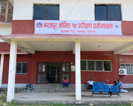 25 more test positive for COVID-19 in a single day in Chitwan