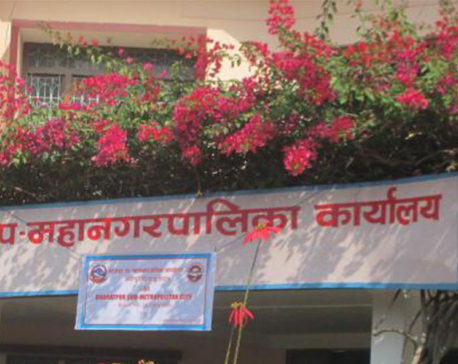 Bharatpur Metropolitan City launches campaign to expand tax net