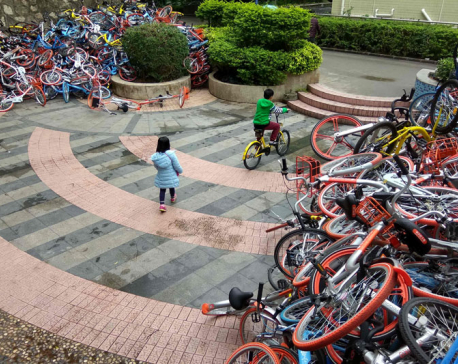 Bikeshare cycles dumped en masse in China
