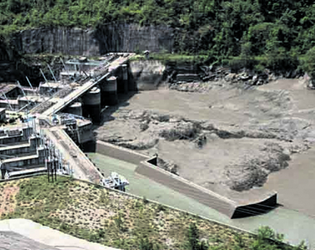 Govt nixes Budhigandaki Hydro award to China firm