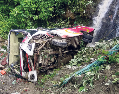 Eight killed, 17 injured in bus plunge