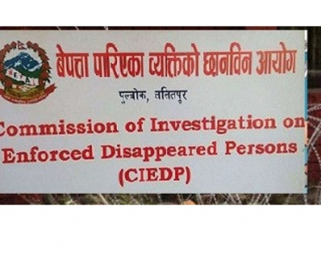 CIEDP making final-round probe into disappearance cases